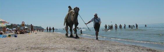 Курорты Украины. Отдых на Черном и Азовском морях
